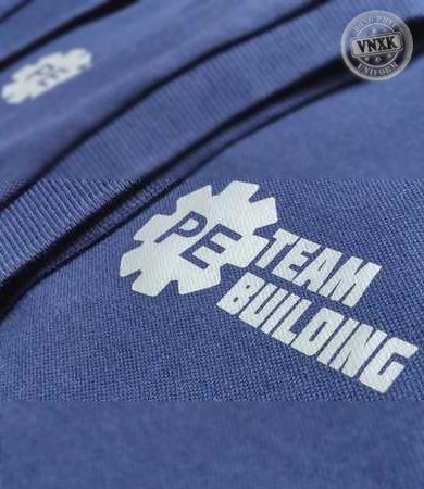 ao-thun-dong-phuc-cong-ty-PE-team-building
